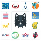 Set Of 13 simple editable icons such as wolf face equestrian home health care hands shaking texas warrior head taxi disability book shop can be used for mobile web UI