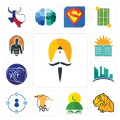 Set Of 13 simple editable icons such as sikh tiger quran hoopoe tidy contruction photography camera sunday school fitness can be used for mobile web UI