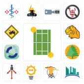 Set Of 13 simple editable icons such as tennis court contruction hoopoe problem management approach pinetree sector tiger towing can be used for mobile web UI