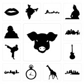 Set Of 13 simple editable icons such as pig face florida giraffe pocket watch cincinnati skyline image les paul karate kick houston gandhi can be used for mobile web UI