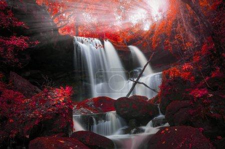 Photo pour Homme Daeng cascade, Cascade avec changement de couleur automne Belle nature . - image libre de droit