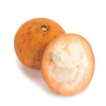 Photo for Santol fruit isolated on white background. - Royalty Free Image
