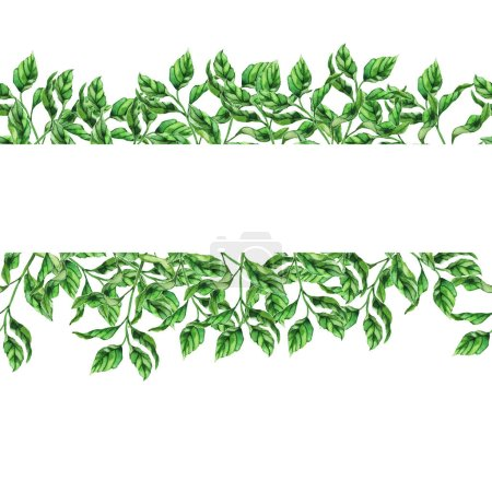 Seamless green foliage border isolated on white background. Hand drawn watercolor illustration.
