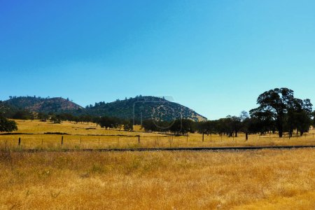 Beautiful view of yellow grass and mountains on a ...