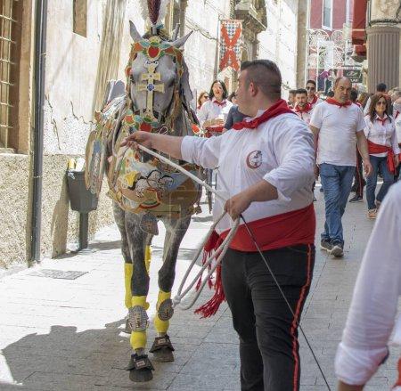Caravaca de la Cruz, Spain, May 2, 2019: Horse being paraded at Caballos Del Vino.