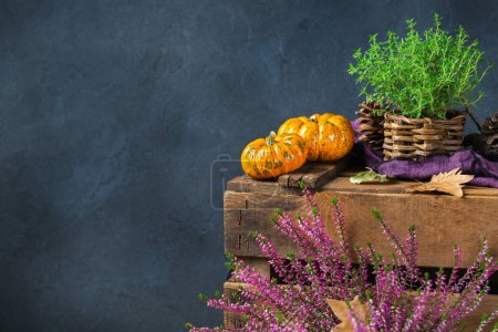 Photo for Fall autumn harvest thanksgiving concept. Organic fresh ripe festive orange pumpkins, green thyme and purple flowers on a rustic wooden table. Copy space rural background - Royalty Free Image