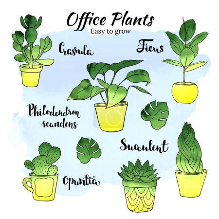 Illustration for Office indor plants - vector hand drawn watercolor illustration set. - Royalty Free Image
