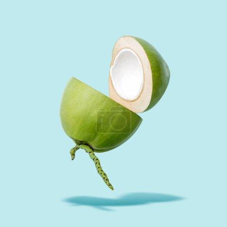 Photo pour Vol de noix de coco verte sur fond bleu, le concept de goût été créatif, flottant jeune noix de coco dans l'air avec un tracé de détourage - image libre de droit