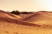 """Постер, картина, фотообои """"Песчаные дюны Маспаломас, Маспаломас, Канарские острова, Испания"""""""