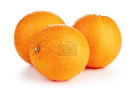 Photo pour Trois fruits oranges mûres isolés sur fond blanc - image libre de droit