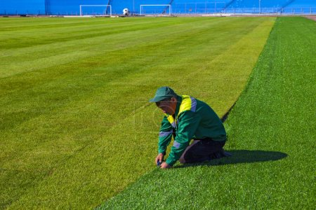 The worker finishes laying the lawn. Football. World Championship 2018. Training stadium of the city of Togliatti, Samara region. May - month 2018. Switzerland will train here. Lawn laying ends.