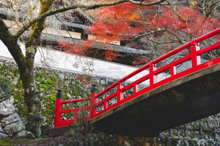 Red bridge in autumn, Osaka Japan