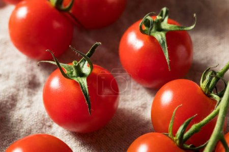 Photo for Raw Red Organic Cherry Tomatoes Ready to Eat - Royalty Free Image