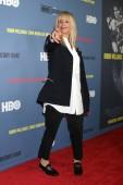 LOS ANGELES - JUN 27:  Rosanna Arquette at the