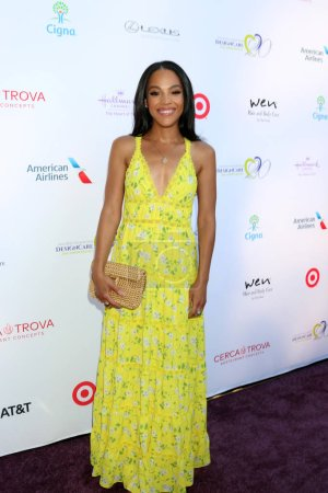 LOS ANGELES - JUL 14:  BIanca Lawson at the 20th Annual DesignCare Gala on the Private Estate on July 14, 2018 in Malibu, CA
