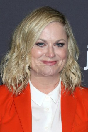 "Photo pour LOS ANGELES - MAR 21 : Amy Poehler au PaleyFest - ""Parks and Recreation"" 10e anniversaire de la réunion au Dolby Theater le 21 mars 2019 à Los Angeles, Californie - image libre de droit"
