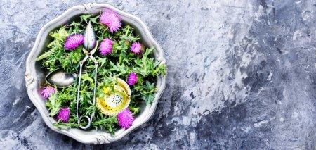 Photo pour Chardon des herbes de guérison dans mortar.Herbal medicine.Tea.Onopordum.Thistle.Natural phytothérapie - image libre de droit