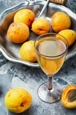Photo for Alcoholic drinks.Apricot wine.Fruit wine or liquor in glass - Royalty Free Image