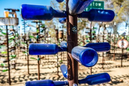 Bottle tree ranch on route 66 california...
