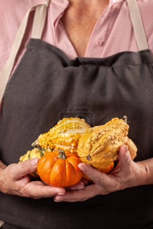 Woman's hands holding pumpkins. Autumn comfort, harvest, farming, Halloween party, Thanksgiving day concept