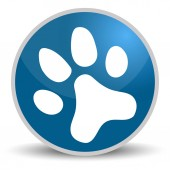 Paw on blue glossy round vector icon in eps 10 Editable modern design internet button on white background