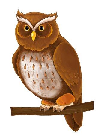 Photo pour Animal Cartoon - hibou assis et à la recherche sur fond blanc - illustration pour enfants - image libre de droit