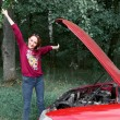 A young girl is near a broken car and gives him fl...