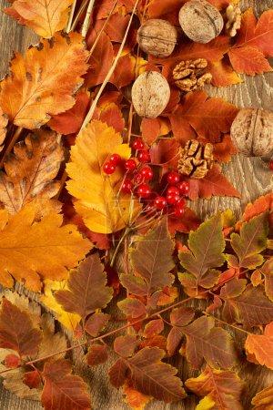 Photo pour Feuilles d'automne sur fond de bois - image libre de droit