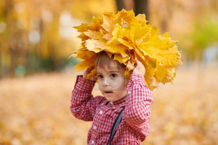 Child boy is posing with yellow fallen leaves on his head. Autumn city park, bright day.