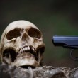 A human skull with a gun on the ground. Horrible t...