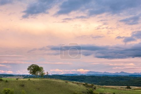 Photo for Rolling Landscape with Alps Mountains at Sunset - Royalty Free Image