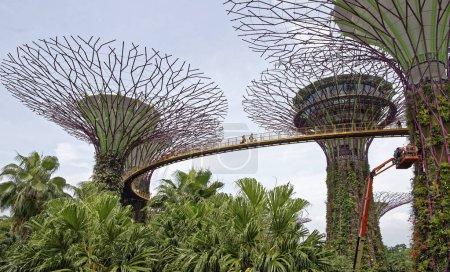 Singapore Singapore August 07 2018