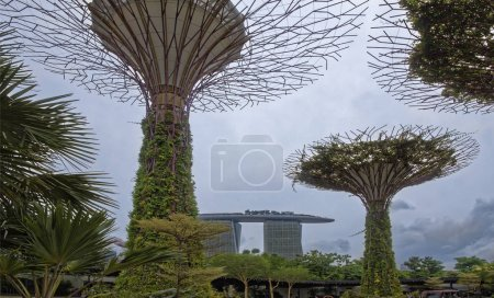 Singapore Singapore August 08 2018