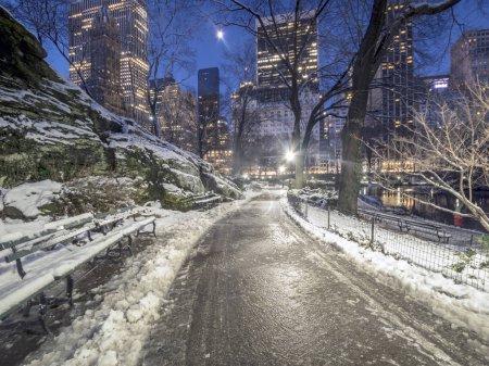 Photo pour Central Park, Manhattan, New York en hiver - image libre de droit