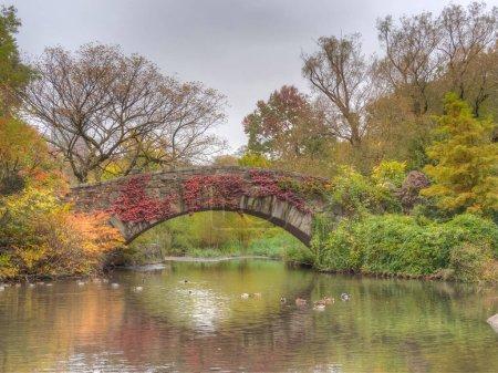 Photo pour Pont Gapstow à Central Park à la fin de l'automne par temps nuageux - image libre de droit