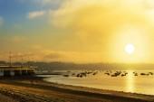 Fishing clams at dawn on Bao beach in Arousa Island