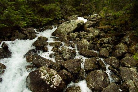 Photo pour Vue de l'eau qui coule dans une rivière montagneuse rocheuse - image libre de droit