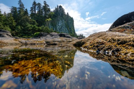Photo for Reflection in a tide pool of Tow (Taaw) Hill, a beautiful ancient volcanic plug remnant in Naikoon Provincial park on the north shore of Graham island of Haida Gwaii (formerly Queen Charlotte Islands) in British Columbia, Canada - Royalty Free Image