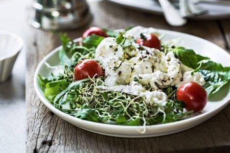 Photo pour Burrata aux tomates cerises et salade de germes de luzerne - image libre de droit