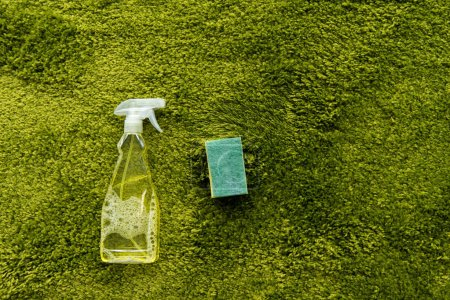 Photo for Top view of spray bottle with detergent and rag on green carpet with copy space - Royalty Free Image