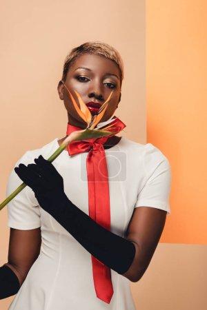 Photo pour Femme américaine africaine attirante dans des gants noirs posant avec la fleur de Strelitzia sur le beige et l'orange - image libre de droit