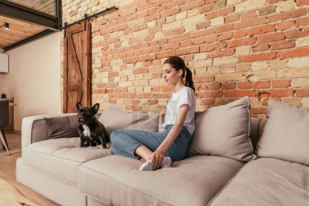 bouledogue français mignon et jolie femme assise sur le canapé dans le salon