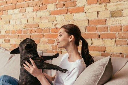 Photo pour Femme heureuse assise sur le canapé et regardant mignon bouledogue français - image libre de droit