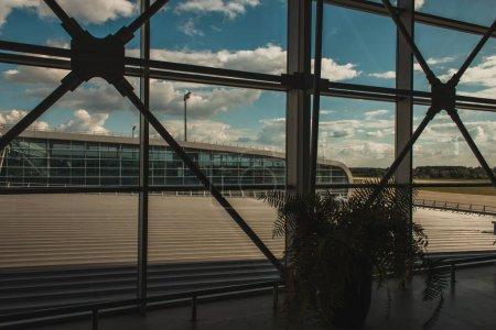 Foto de Planta cerca de ventanas en el aeropuerto y cielo nublado en segundo plano, Copenhague, Dinamarca. - Imagen libre de derechos