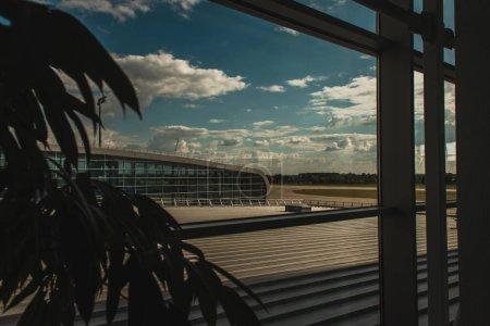Selective focus of plant near glass of window in airport in Copenhagen, Denmark