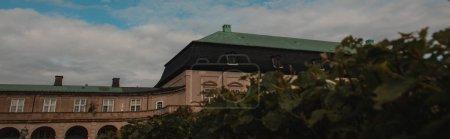 Photo pour Vue panoramique des buissons et de la façade du bâtiment avec un ciel nuageux en arrière-plan à Copenhague, Danemark - image libre de droit