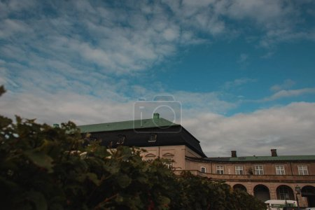 Photo pour Concentration sélective des buissons, façade du bâtiment et ciel nuageux en arrière-plan à Copenhague, Danemark - image libre de droit