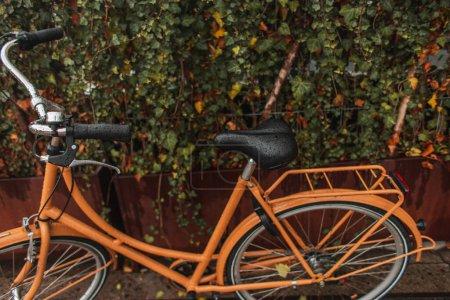 Photo pour Vélo orange humide près des buissons dans la rue urbaine - image libre de droit