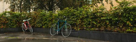 Photo for Panoramic shot of bicycles near bushes on urban street - Royalty Free Image