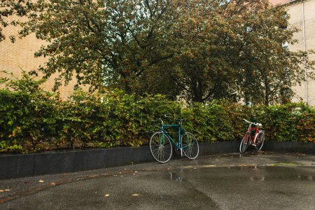 Photo for Bicycles near green bushes on urban street during rain - Royalty Free Image